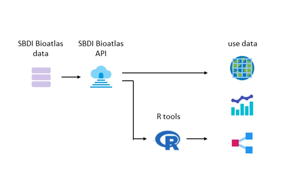 Flow chart of SBDI data and analyze tools